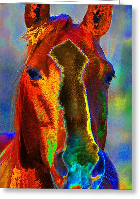 Berry Greeting Cards - Equus Greeting Card by Diane E Berry