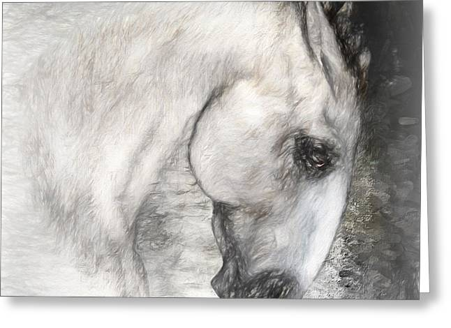 Horses Art Print Greeting Cards - Equus Greeting Card by Shanina Conway