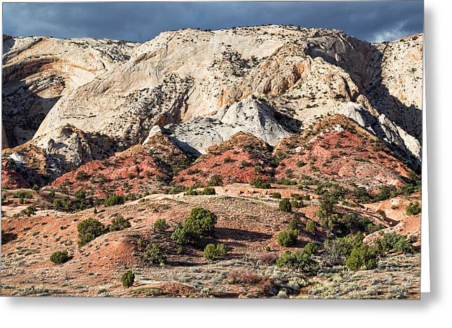 Monolith Greeting Cards - Eroded Monocline Greeting Card by Kathleen Bishop
