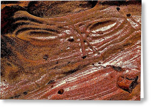 Point Lobos Greeting Cards - Erosion Greeting Card by Scott L Holtslander
