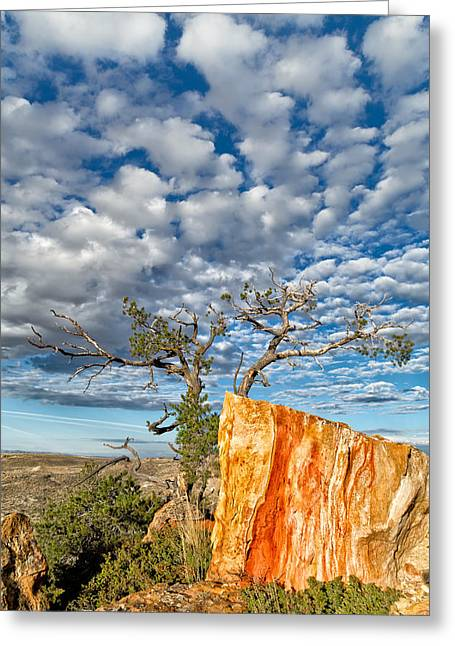 Monolith Greeting Cards - Escarpment in the Badlands Greeting Card by Kathleen Bishop