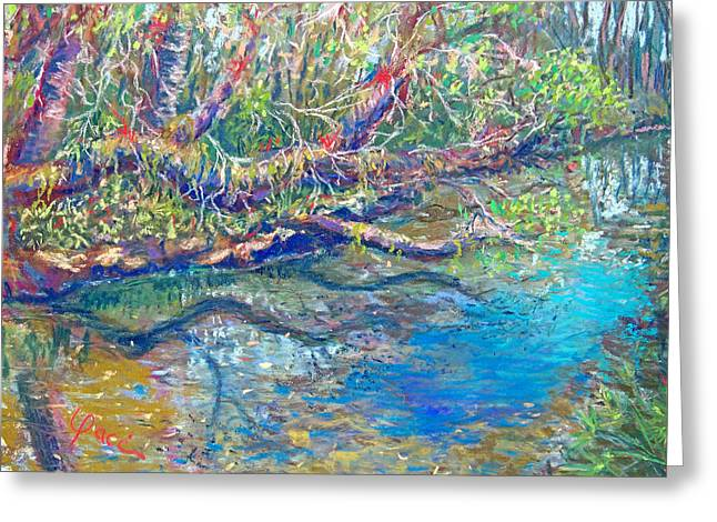 Estero River West Greeting Card by Laurie Paci
