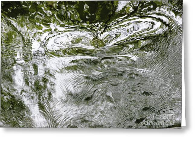 Glassy Lake Surface Greeting Cards - Et Greeting Card by Joanne Baldaia - Printscapes