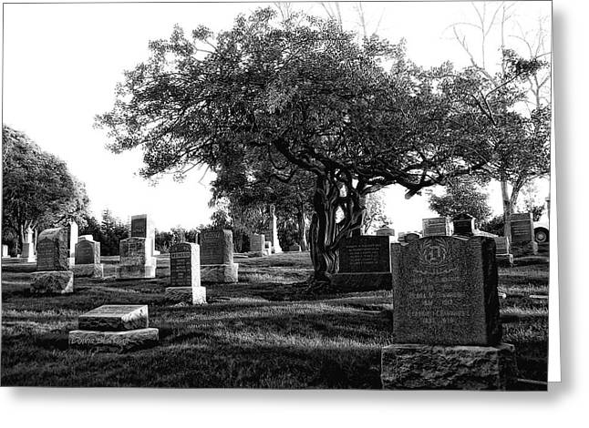 Final Resting Place Greeting Cards - Etched In Stone Greeting Card by Donna Blackhall