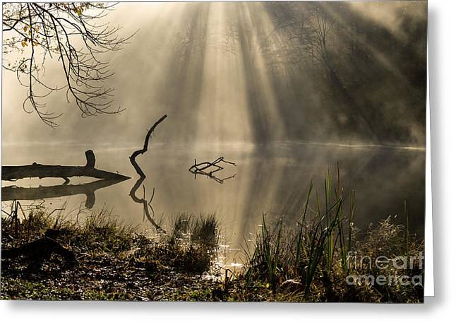 Ethereal - D009972 Greeting Card by Daniel Dempster