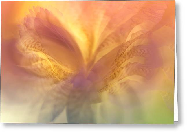 Ephemeral Greeting Cards - Ethereal Life 20. Interior Ideas Greeting Card by Jenny Rainbow
