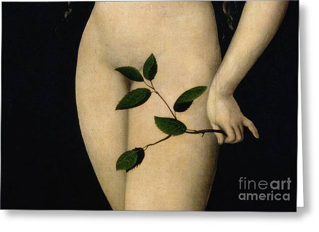 Close Up Paintings Greeting Cards - Eve Greeting Card by The Elder Lucas Cranach