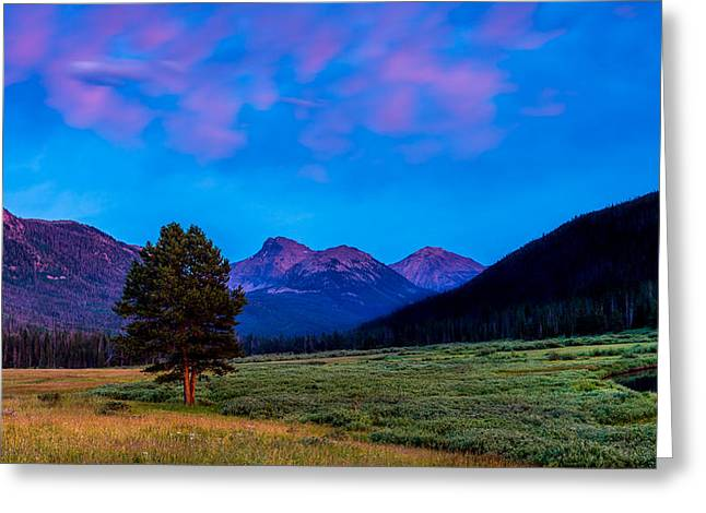 Evening At Christmas Meadows Greeting Card by TL  Mair