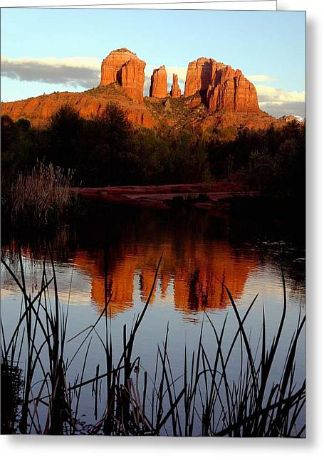 Oak Creek Greeting Cards - Evening atCathedral rock  Greeting Card by Larry Sobel