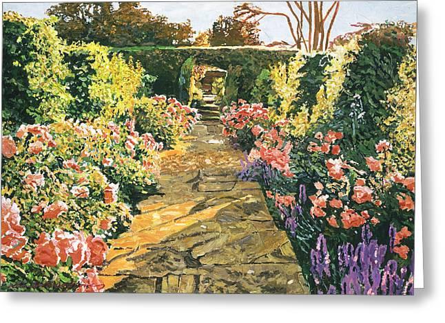 Evening Garden Sussex England Greeting Card by David Lloyd Glover