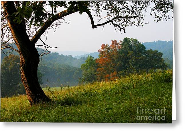 Mountain Valley Greeting Cards - Evening in the Pasture Greeting Card by Thomas R Fletcher