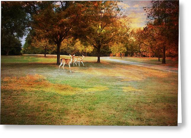 Warm Landscape Greeting Cards - Evening Greeting Card by Jai Johnson