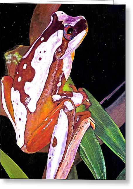 Tree Frog Greeting Cards - Evening Jewel Greeting Card by Debbie Chamberlin