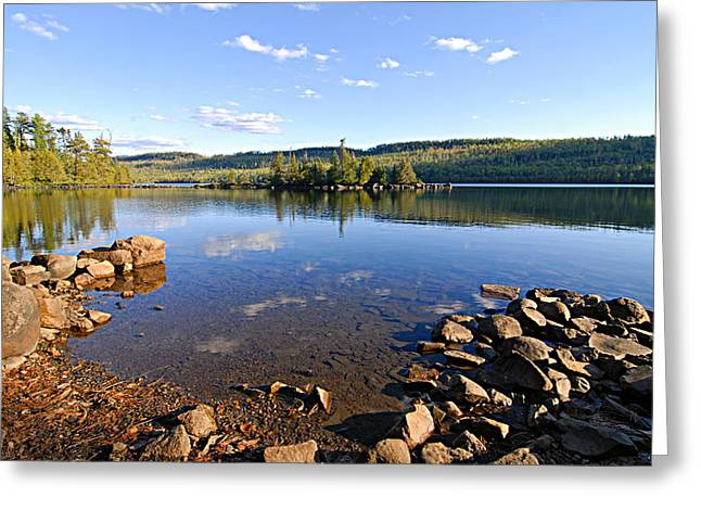 Boundary Waters Greeting Cards - Evening on Cedar Lagoon Pine Lake Greeting Card by Larry Ricker