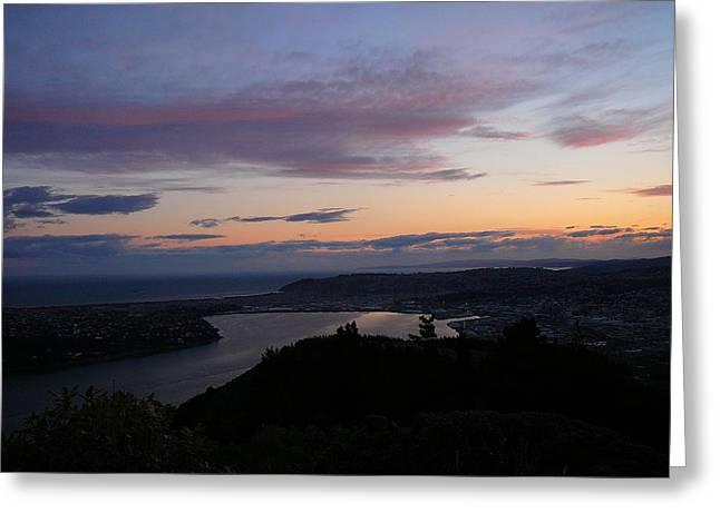 Terry Perham Greeting Cards - Evening Otago Harbour Greeting Card by Terry Perham