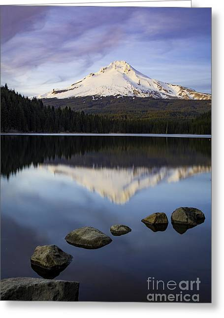 Evening Over Mt Hood Greeting Card by Brian Jannsen