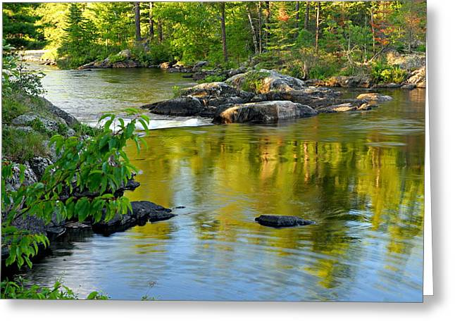 Blue Green Water Photographs Greeting Cards - Evening Reflections at Lower Basswood Falls Greeting Card by Larry Ricker