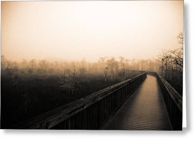 Everglades Boardwalk Greeting Card by Gary Dean Mercer Clark