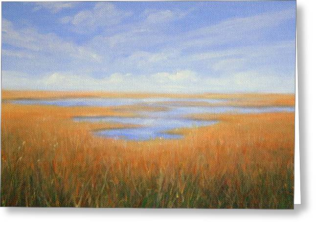 Print On Canvas Greeting Cards - Everglades Greeting Card by Mary Taglieri