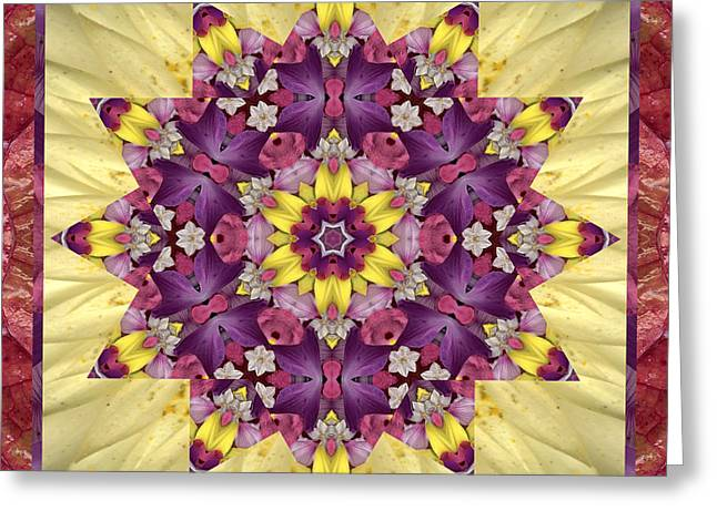 Garden Mandala Greeting Cards - Everlasting Greeting Card by Bell And Todd