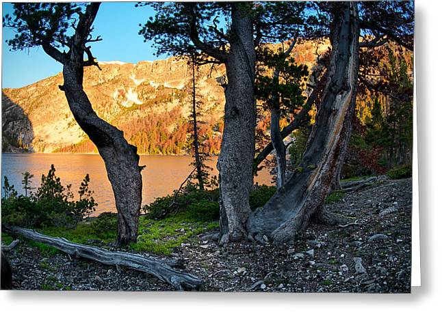 Everson Lake 2 Greeting Card by Leland D Howard