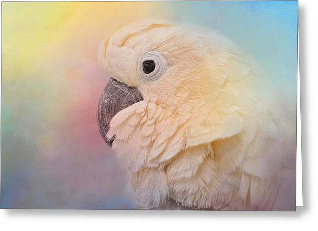White Cockatoo Greeting Cards - Every Day Is Colorful Greeting Card by Jai Johnson