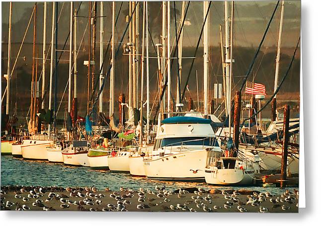 Santa Cruz Sailboat Greeting Cards - Everyones Waiting Greeting Card by Roger Lyon