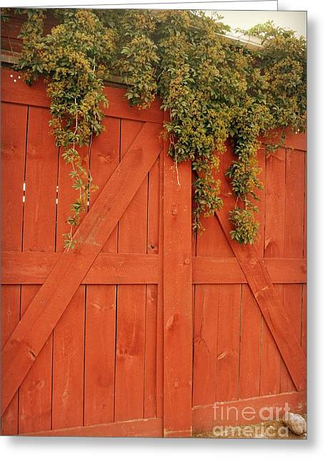 Barn Door Greeting Cards - Everything has Beauty Greeting Card by Julie Street