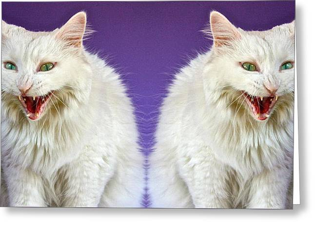 Evil Cats Mad As Hell Greeting Card by Robert Frank Gabriel