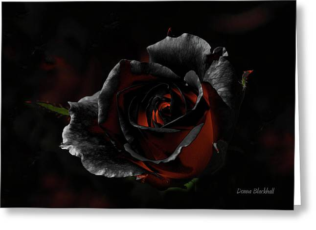Black Roses Greeting Cards - Evil Thoughts Greeting Card by Donna Blackhall