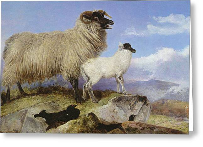 Ewe And Lambs Greeting Card by Richard Ansdell