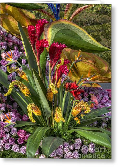 Exotic Flowers Greeting Card by David Zanzinger