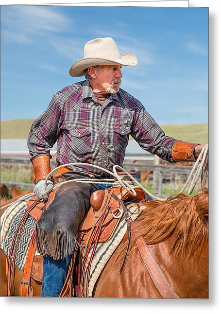 Experienced Cowboy Greeting Card by Todd Klassy