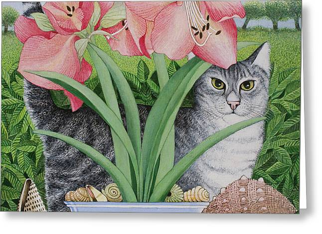 Cute Kitten Drawings Greeting Cards - Exploring Possibilities Greeting Card by Pat Scott