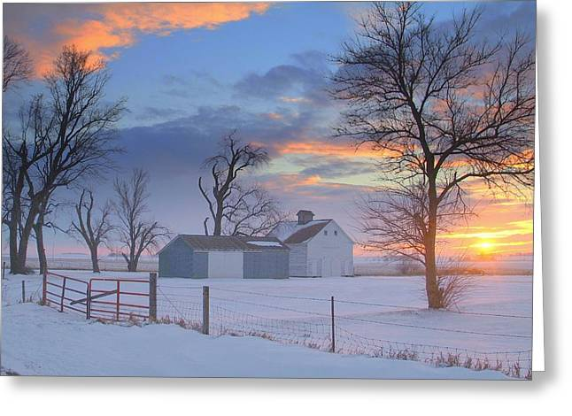 Skys Greeting Cards - Eye Candy..winters Greeting Card by Al  Swasey