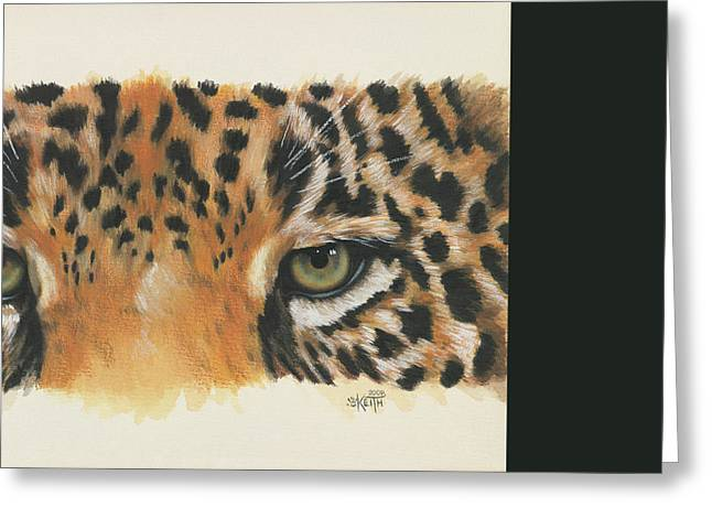 Wildcats Greeting Cards - Eye-Catching Jaguar Greeting Card by Barbara Keith