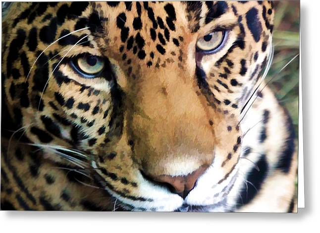 Jaguars Greeting Cards - Eye Of The Leopard Greeting Card by Athena Mckinzie