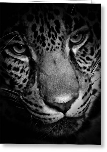 Jaguars Greeting Cards - Eye Of The Leopard BW Greeting Card by Athena Mckinzie