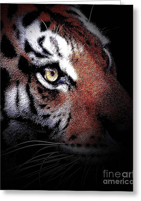 Animals Art Greeting Cards - Eye of the Tiger 2 Greeting Card by Animals Art