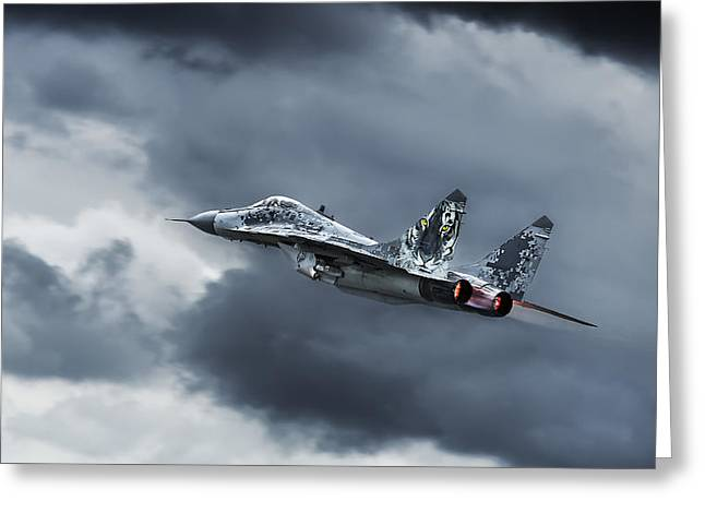 Aircraft Photographs Greeting Cards - Eye Of The Tiger Greeting Card by Leon