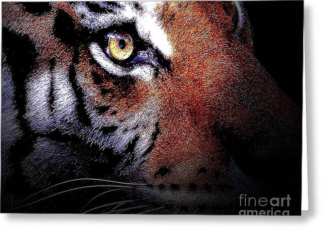 The Amazons Greeting Cards - Eye of the Tiger Greeting Card by Wingsdomain Art and Photography