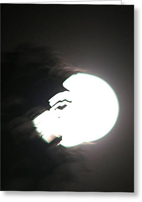 Winter Night Greeting Cards - Eye on You Moon Greeting Card by Nancy TeWinkel Lauren
