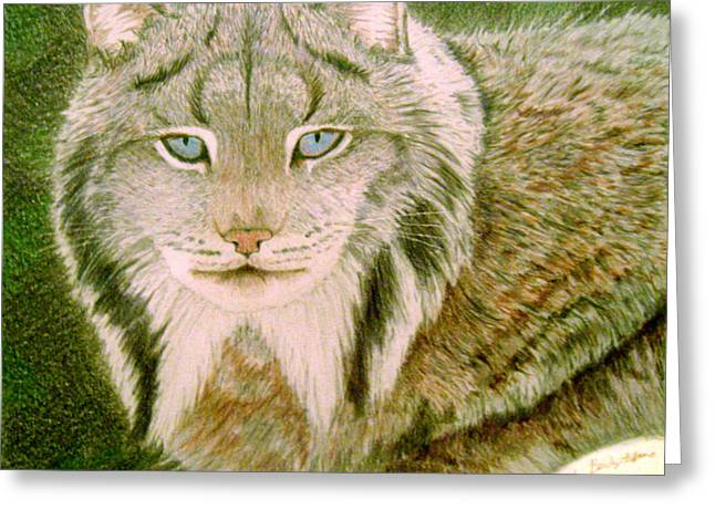 Eyes Of The Lynx Greeting Card by Nils Beasley