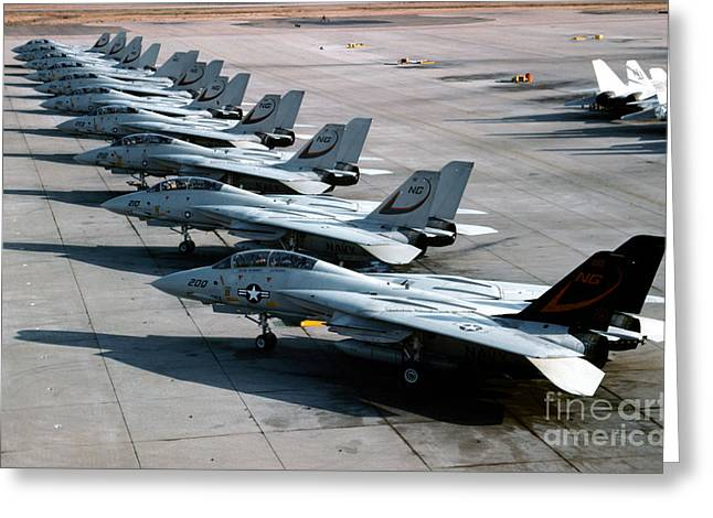 Military Base Greeting Cards - F-14a Tomcats On The Flight Line At Nas Greeting Card by Dave Baranek