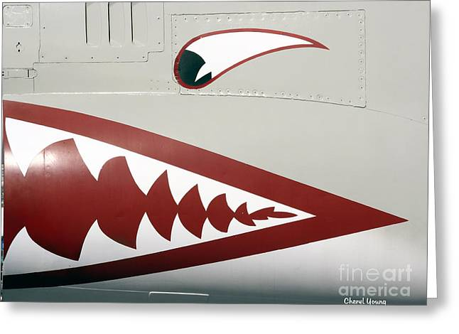 Paint Photograph Greeting Cards - F 8 Crusader Greeting Card by Cheryl Young