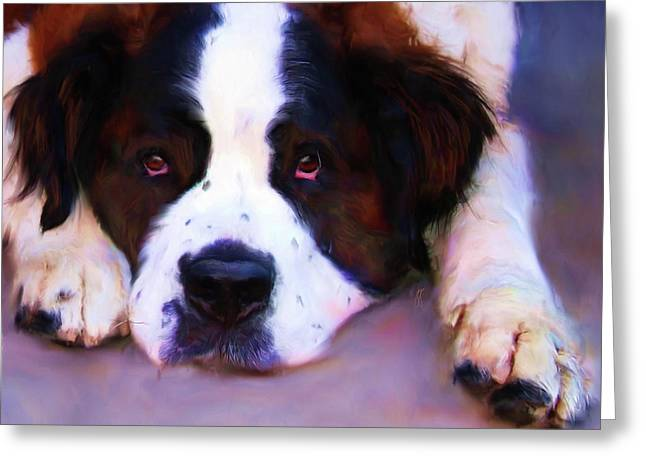 St Bernard Greeting Cards - Face of a Saint Greeting Card by Jai Johnson