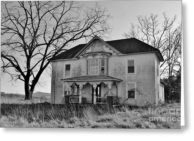 Original Photographs Greeting Cards - Fading Grace Greeting Card by Kelly Nowak
