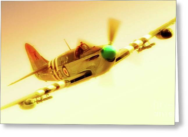 Fame Greeting Cards - Fairey Firefly Chino Planes of Fame 2011 Greeting Card by Gus McCrea