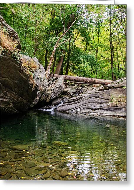 Fairmount Park - Devils Pool Greeting Card by Bill Cannon