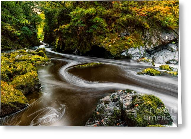 Rapids Greeting Cards - Fairy Glen Autumn Greeting Card by Adrian Evans